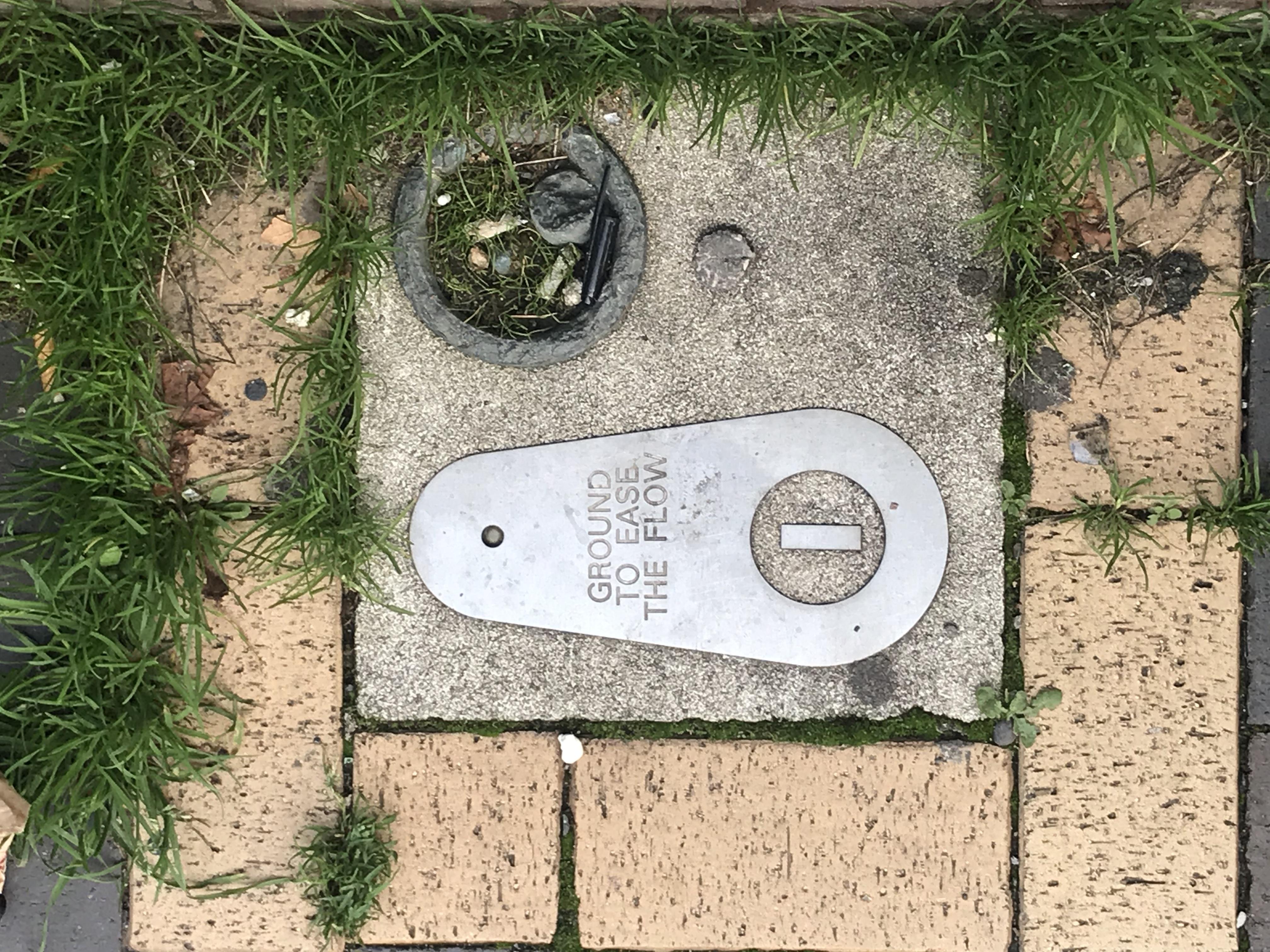 pavement trail borax